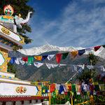 Kalaczakra temples in Mcleodganj - Mcleod-ganj - Himachal-Pradesh
