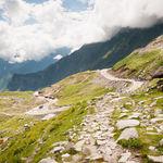 Rohtang pass greenery - Rohtang-Pass - Himachal-Pradesh