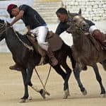 Polo in Ladakh - Ladakh - Jammu-and-Kashmir