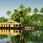Beautiful lake and greenery at Alappuzha in Kerala - Alappuzha - Kerala
