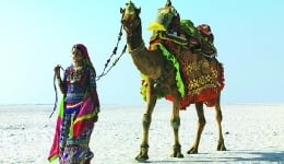 Attending the Rann Utsav? Here are the top 5 things to do in Kutch!