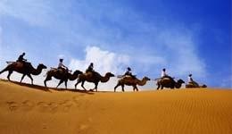 Camel Safari in Bikaner