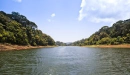 Here's why you should visit Periyar National Park!