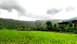 Kamshet