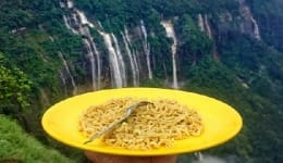 This guy traveled across India with a yellow plate to try different flavors of the country!