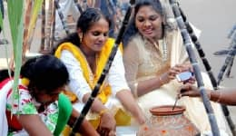 Pongal 2017: Did you know the history and significance of Pongal?