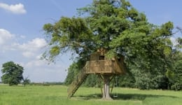 10 tree house resorts in India that look absolutely magical!