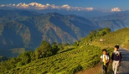 Top 10 child friendly summer holiday destinations in India