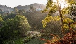 10 photos that prove Darjeeling is truly nature's paradise