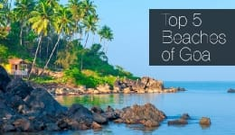 Top five beaches of Goa