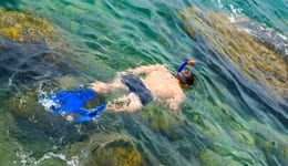 Scuba Diving and Snorkeling in Tarkarli