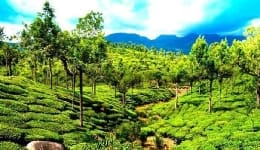 Best tourist places in south India during summer