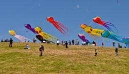 Kite Festival in Hyderabad