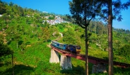 Everything you should know about Nilgiri Mountain Railway