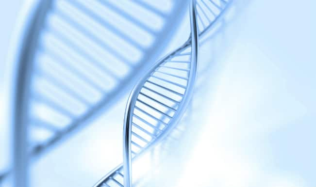 Study reveals that genes influence male sexual orientation