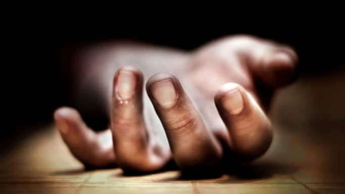 Delhi Man Kills Wife Over Frequent Fights, Surrenders Later