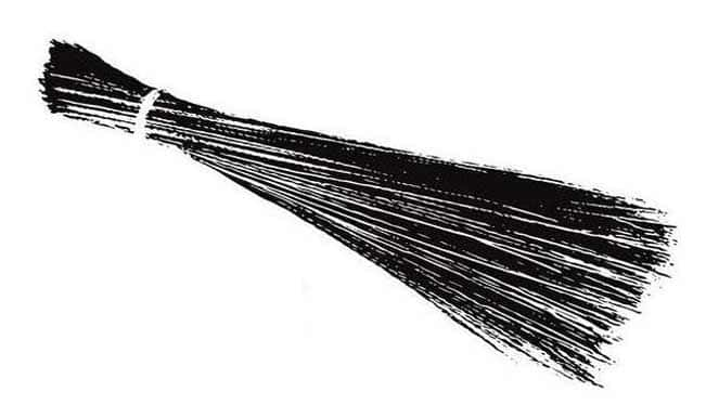 broom_p_010813