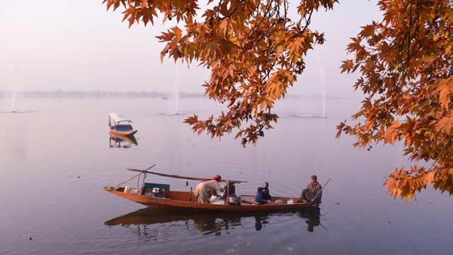 Srinagar-3