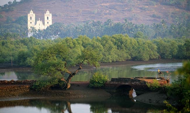 30 percent economic activity in Goa at risk due to global warming