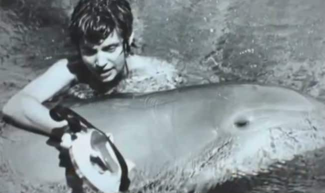 When a male dolphin fell in love with a female researcher