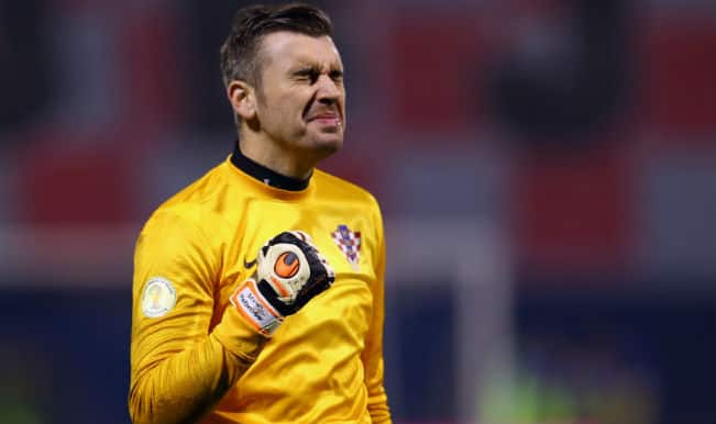 World Cup 2014: Croatian goalkeeper Stipe Pletikosa eager to face Brazilian challenge