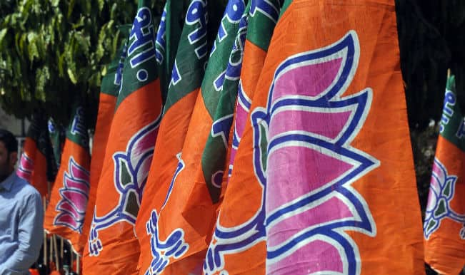 Bharatiya Janata Party protests against acute Delhi power crisis