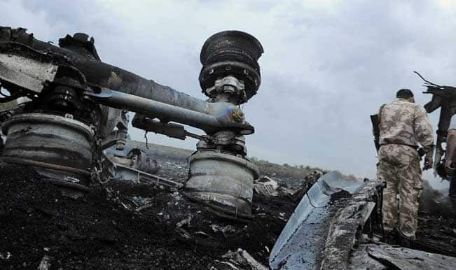 'Malaysian Airlines MH17 jet was hit by missile shrapnel'