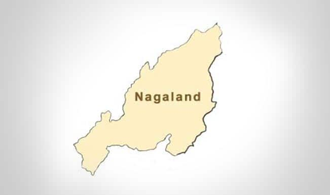 Oil exploration resumes in Nagaland after 20 years