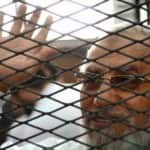 Giza Criminal Court confirms death sentence for Muslim Brotherhood group…