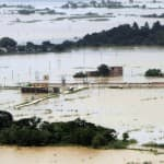 Odisha flood toll mounts to 45, water level goes down