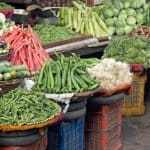 Inflation dips to 5-month low of 5.19 per cent in…