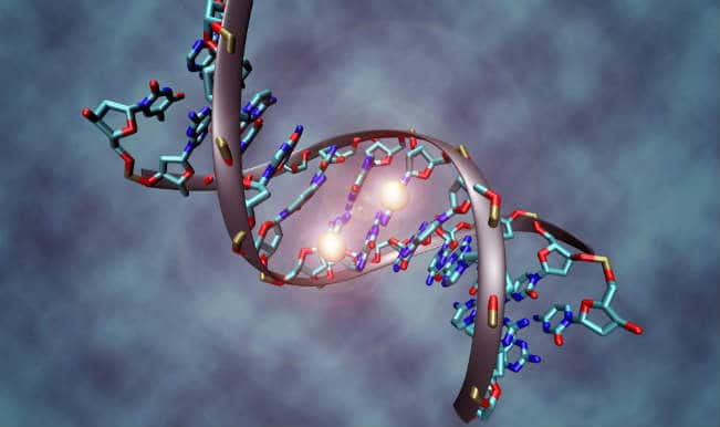 New tool to detect gene mutations