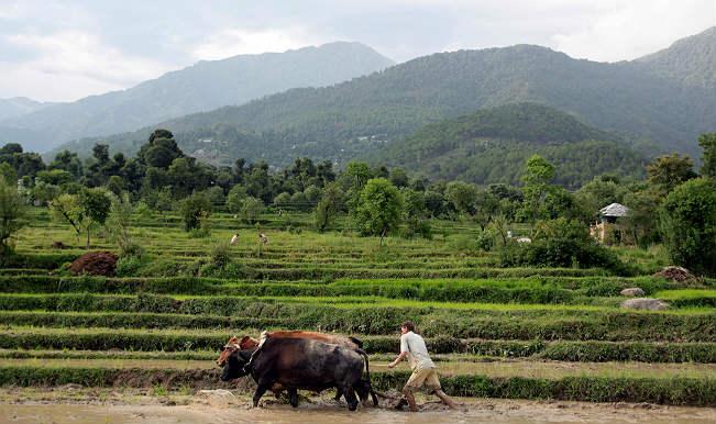 Rice from Andhra Pradesh reaches Tripura for first time via Bangladesh
