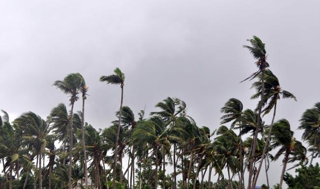245 babies born on cyclone day in Odisha