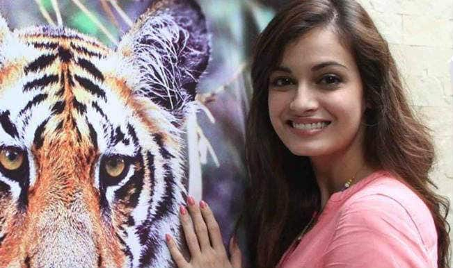 Dia Mirza misses voting for pre-wedding celebrations