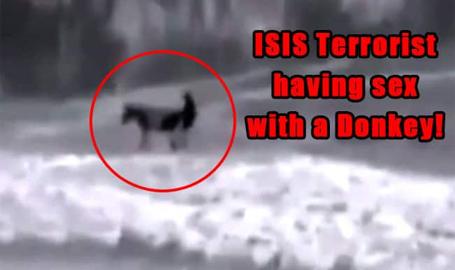 ISIS Militant Having Sex with Donkey Video Fake or Real?