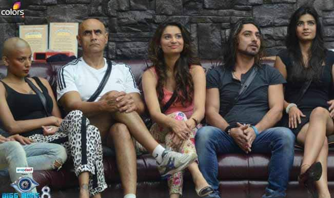 Bigg Boss 8 Day 81 episode review: Karishma Tanna picks a fight with Puneet Issar