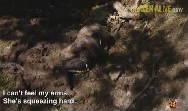 giant anaconda eats man alive - photo #17