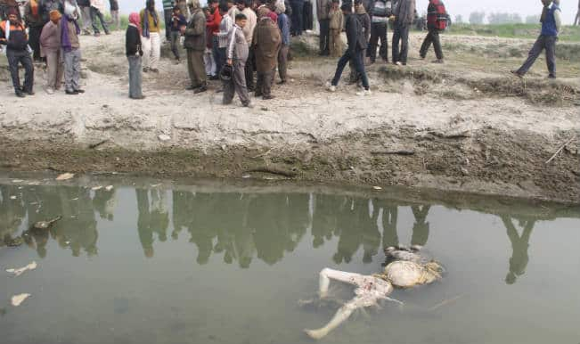 Curious recovery of 100 bodies from Ganga river in Uttar Pradesh