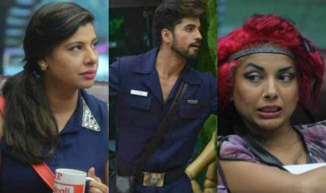 Bigg Boss Halla Bol: Is Gautam Gulati interested in romancing only older women?