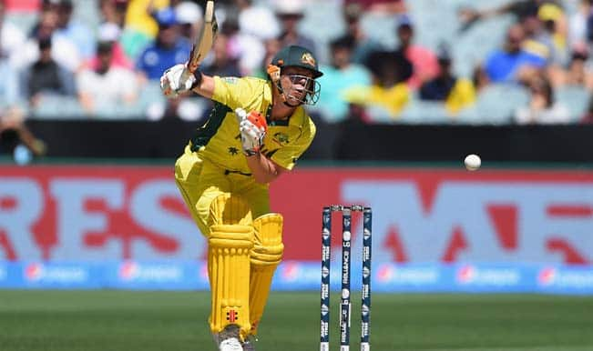 David Warner OUT! New Zealand vs Australia, ICC Cricket World Cup 2015 — Watch video highlights of fall of wicket