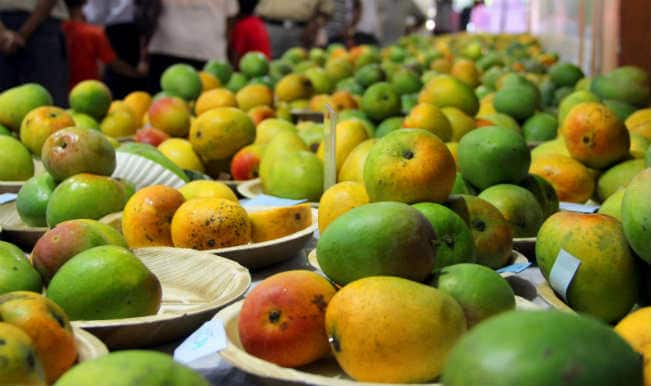 Modi mango: Celebrated mango grower names mangoes after PM Narendra Modi