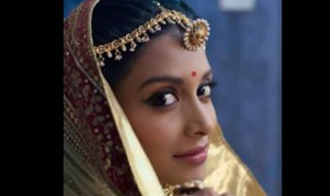 Rachana Parulkar set to enjoy motherhood, on screen!