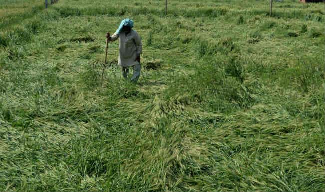 Farmers to get subsidy direct in bank account: Radhamohan Singh