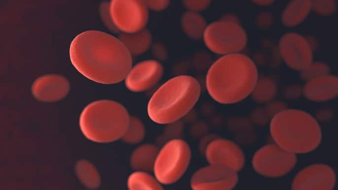 World Sickle Cell Day: This is What You Must Know About This Blood Disorder