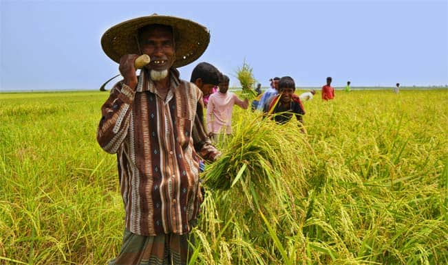 agriculture credit to farmers in india And access to credit in west bengal, india: a stochastic frontier approach arindam laha it can be argued that farmers having access to credit achieved a technical efficiency in agricultural production and access to.