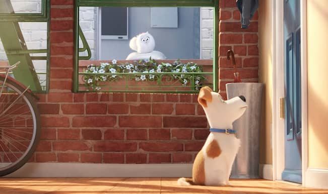 The Secret Life of Pets teaser trailer: Adorable new animated feature film from the makers of Despicable Me!