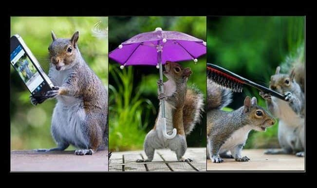 Squirrels with umbrella and mobilephone? These pictures by photographer Max Ellis will amaze you!