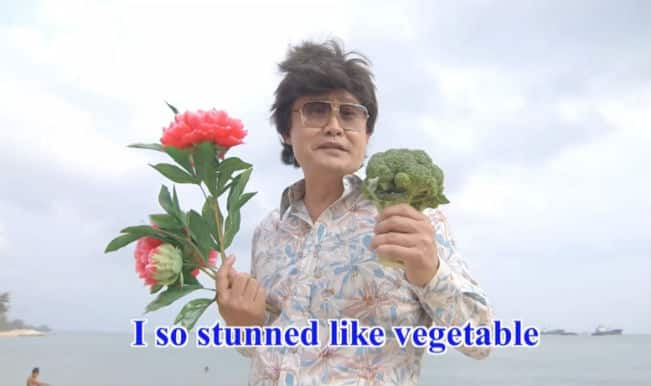 Avoid this Unbelievable video with lyrics like 'I so stunned like vegetable'!