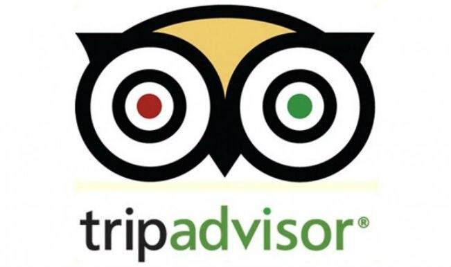 TripAdvisor to Lay Off 900 Employees Due to COVID-19 Impact